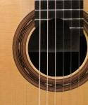 Cocobolo Guitar (detail)