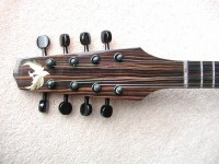 Jazz Mandolin (detail)