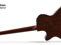 Acoustic Bass (back)