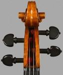 Violin 2007 (detail)