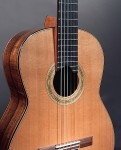 Brazilian rosewood guitar