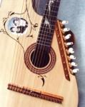 Custom harp guitar