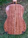 Classical Guitar #3