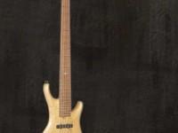 Bass Guitar LG series