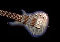 Pederson Bass Guitar