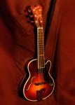 Jazz Guitar model Elf
