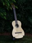 Classical Guitar #1