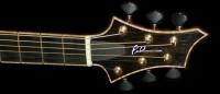 Archtop jazz/rock Guitar