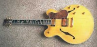 Coobs archtop guitar
