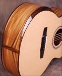 SN 261 Acoustic guitar