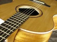Model B Guitar (detail)