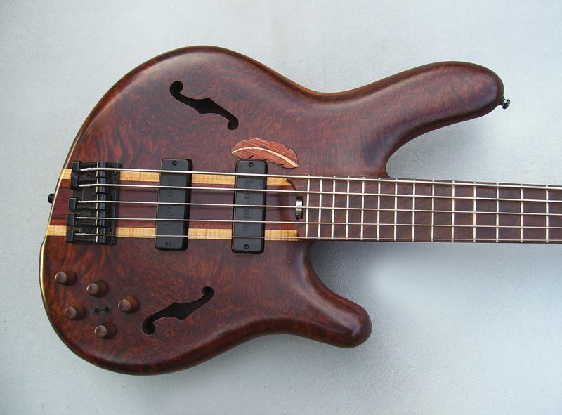 5 string fretted Pisces Bass - Image 1