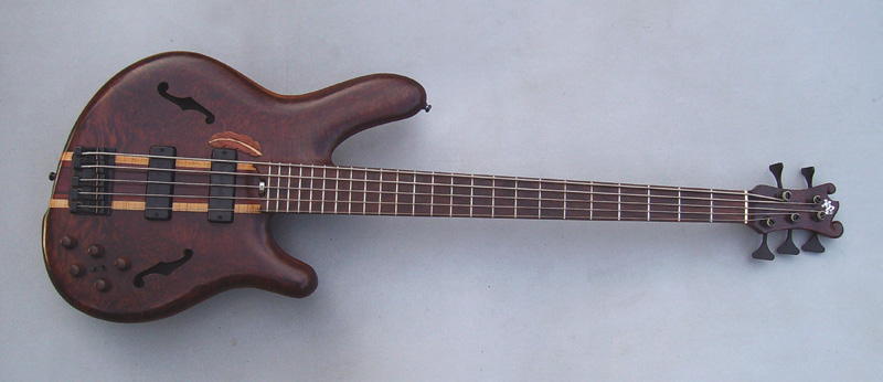 5 string fretted Pisces Bass - Image 2