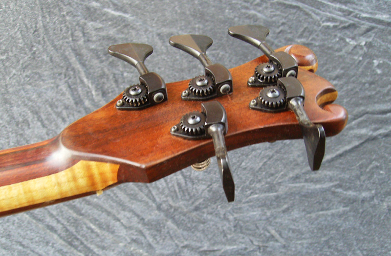5 string fretted Pisces Bass - Image 3